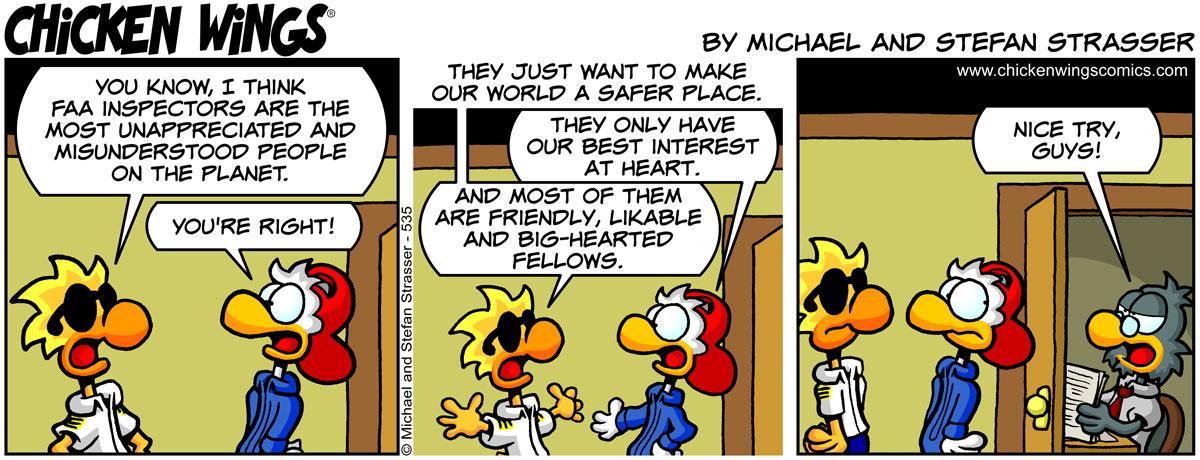 Misunderstood FAA inspectors